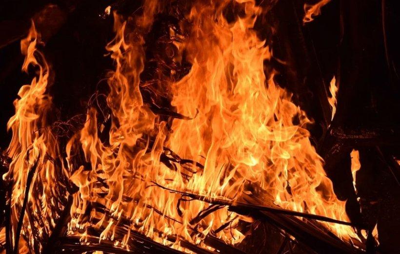 Zeci de animale au murit într-un incendiu, la Arad. Pompierii au ajuns prea târziu
