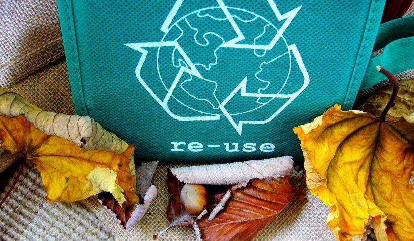 5 categorii de produse pe care le pot recicla nu doar firmele, ci oricine iubește natura