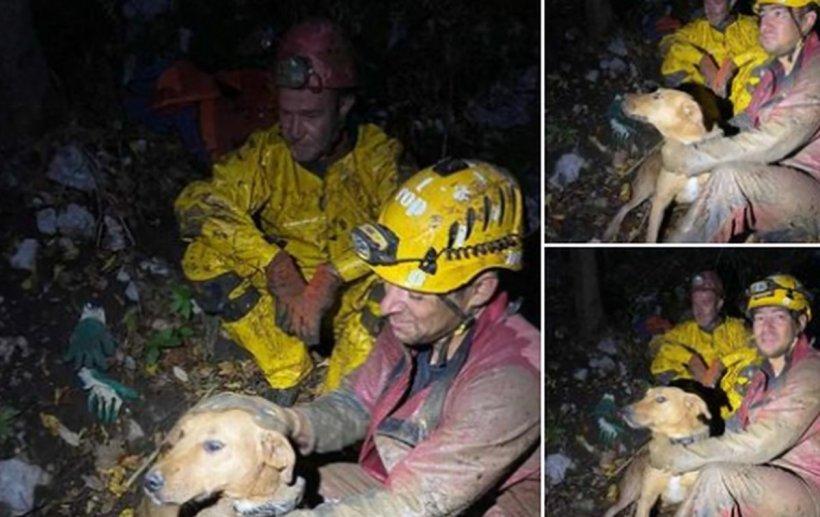 """Cățel blocat cinci zile într-o peșteră, lângă Râșnov. """"S-a crezut pisica cu nouă vieți!"""""""
