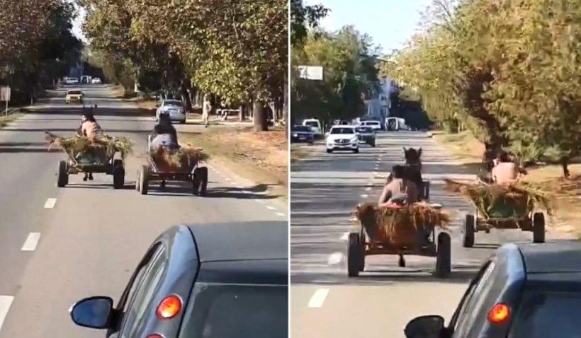 Cursă nebună între două căruțe și cai loviți pentru a goni cu viteză, la intrare în Medgidia