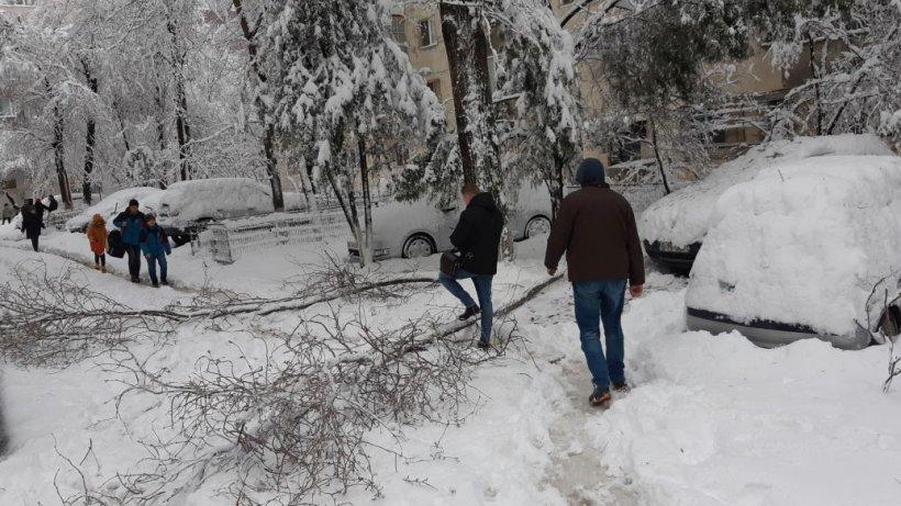 Iarna și-a intrat oficial în drepturi! Zăpadă a acoperit mai multe drumuri din ţară