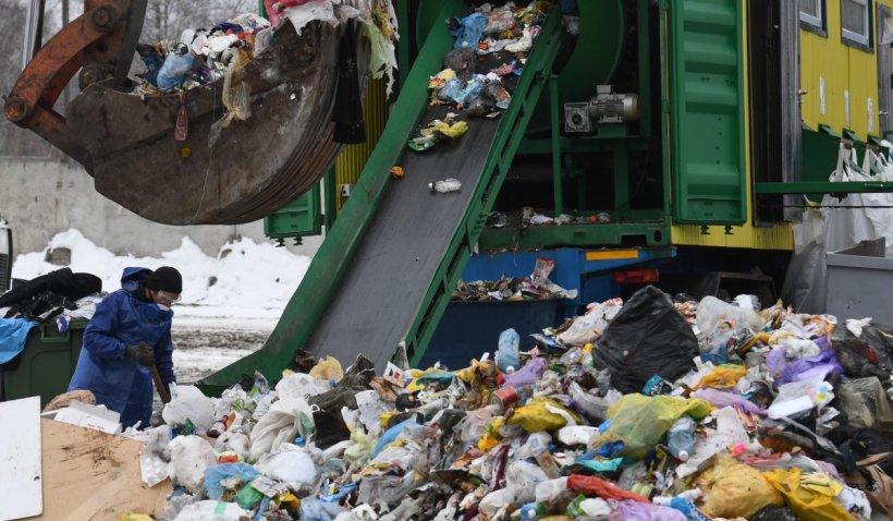 Legea compostului se aplică de la 1 ianuarie! Ce amenzi riscă românii care nu colectează separat deșeurile vegetale