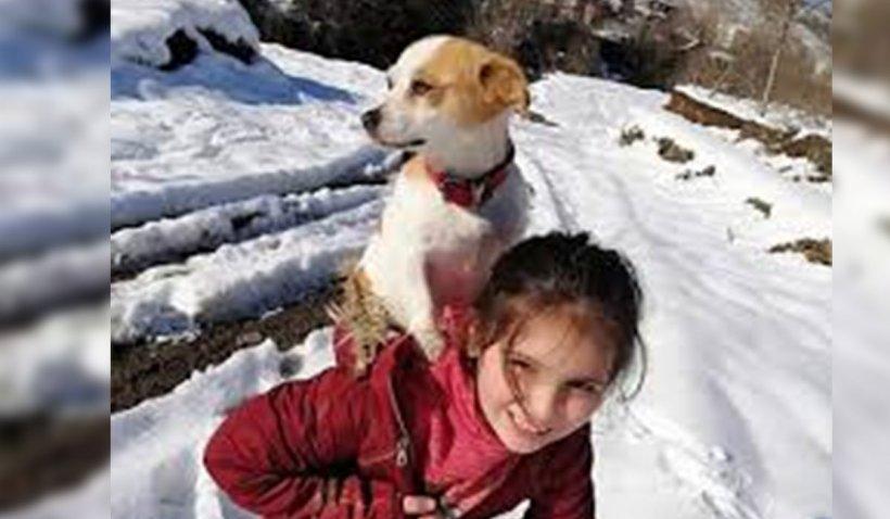 O fetiță de 9 ani din Turcia și-a cărat câinele pe spate doi kilometri, în zăpadă, pentru a ajunge la veterinar