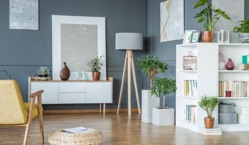 Cum aduci o parte din natură în designul interior al locuinței tale – metode la îndemâna ta