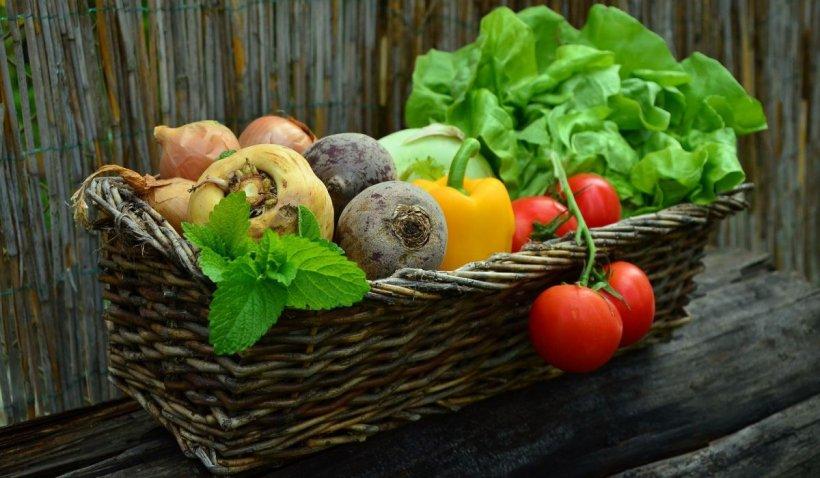 Cum păstrezi alimentele proaspete pentru mai mult timp