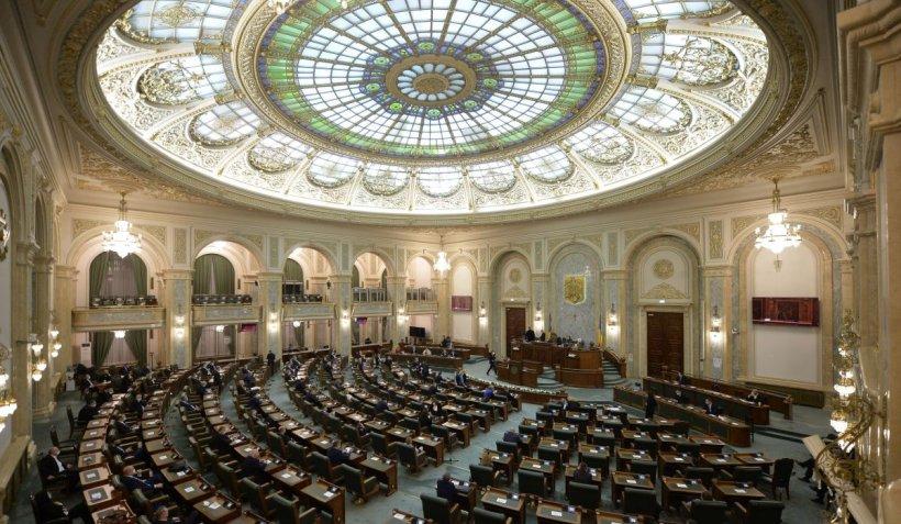 Moţiunea împotriva ministrului Economiei, Claudiu Năsui, a picat la Senat
