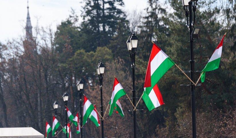 Primarul din Sfântu Gheorghe a fost amendat după ce a pus în oraș steaguri ungurești de Ziua Maghiarilor de Pretutindeni