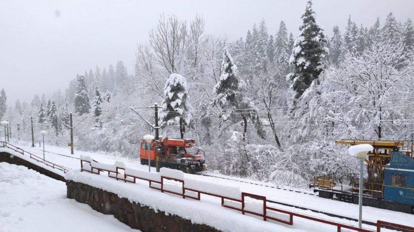 Bilanțul codului de vreme rea din țară: Accidente rutiere, trenuri blocate, oameni răniți și copaci doborâți