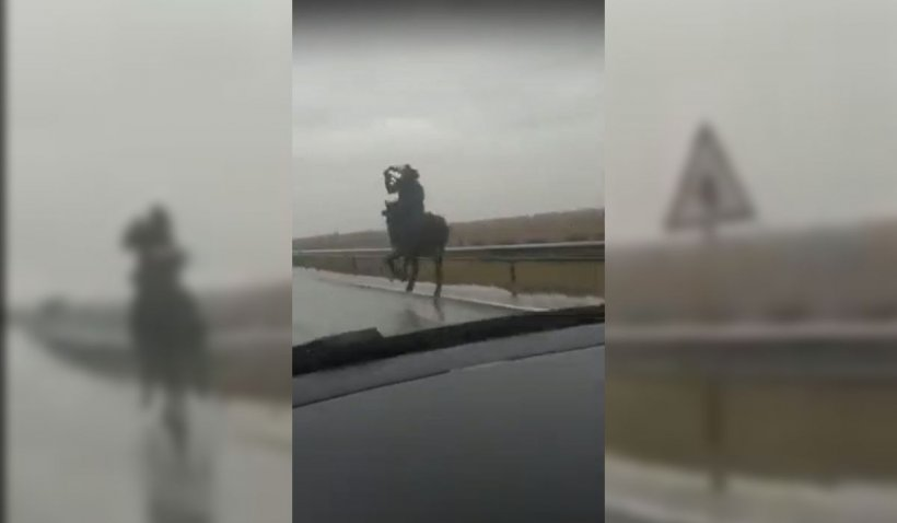 Călare pe cal, prin ploaie, pe drumul european. Poliţia din Dolj îl caută pe bărbatul care a galopat printre maşini | VIDEO