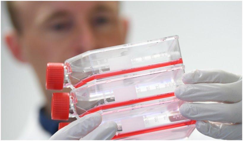 CNN: Vaccinurile ARN mesager oferă o imunitate de cel puțin nouă luni de zile