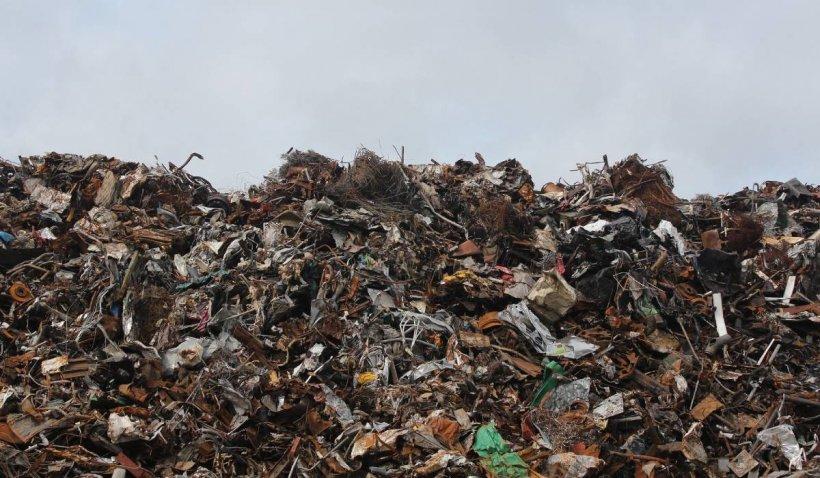 Containere pline de deșeuri, confiscate în Portul Constanța