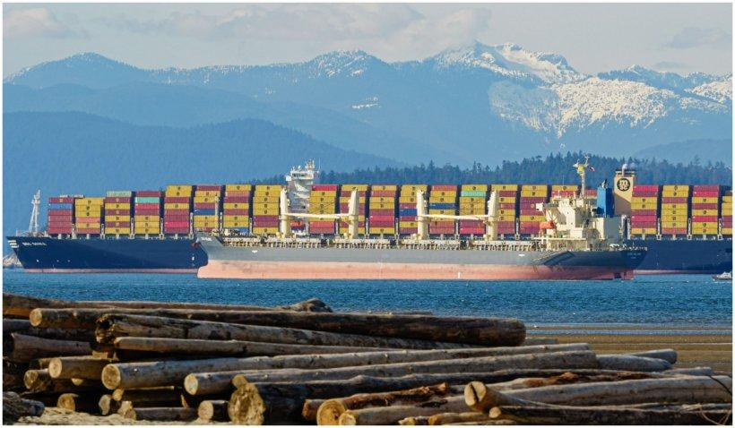 Tot mai multe containere cu marfă ajung în mare. Peste 90% din bunurile aflate în mişcare la nivel mondial sunt transportate pe nave