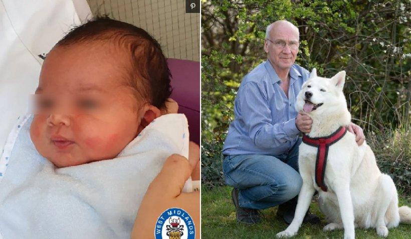 Un bebeluș, abandonat într-un parc din Marea Britanie, a fost salvat de un câine Husky