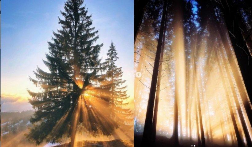 Apple a preluat imaginile unui fotograf român. Priveliștile din Bucovina care au atras atenția în străinătate