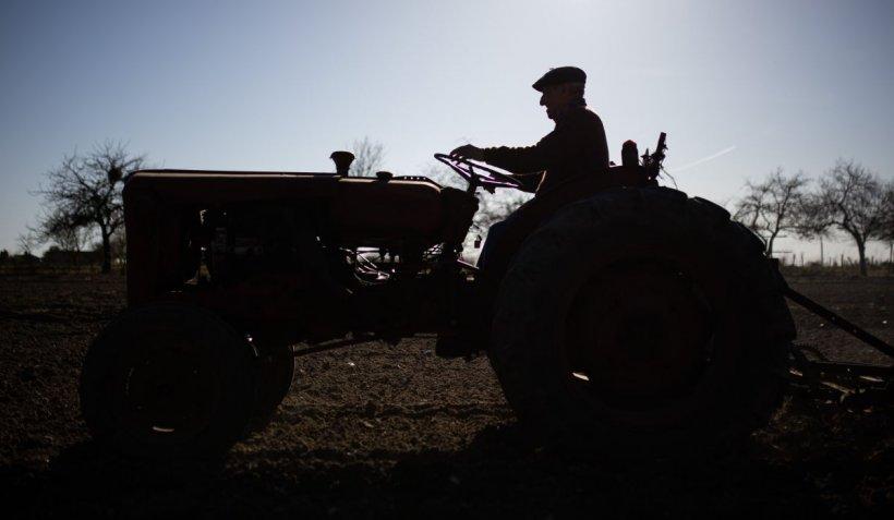 Doi afgani au fost călcaţi cu tractorul, în Timiş. Unul are şanse minime de supravieţuire