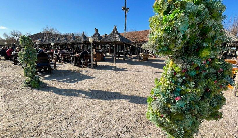 Olimp, staţiunea unde turiştii merg special ca să mânânce peşte din Marea Neagră
