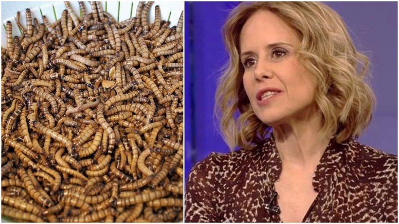 """Insectele, aprobate ca aliment în UE. Reacţia Mihaelei Bilic, medic nutriţionist: """"Tot ce este prăjit este crocant şi are un gust delicios"""""""