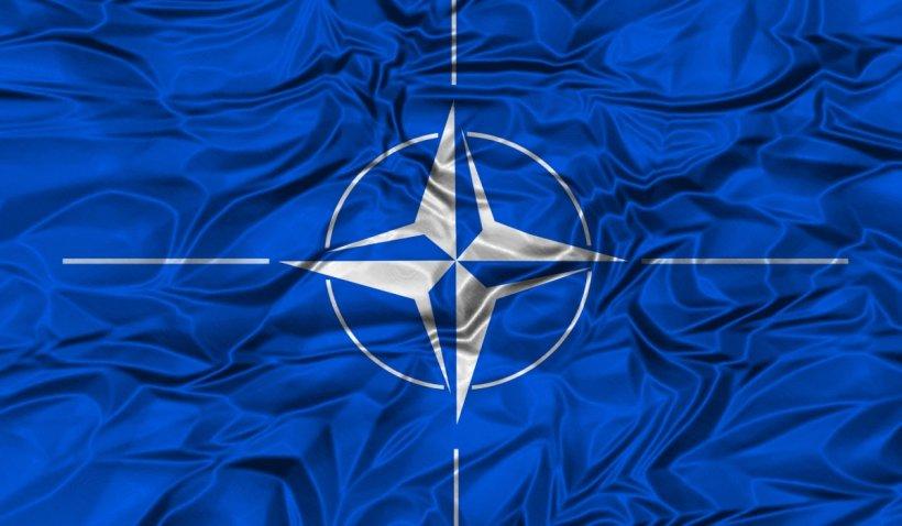 Declarația comună de la summitul NATO: Condamnăm actele de sabotaj ale Rusiei pe teritoriul Alianţei