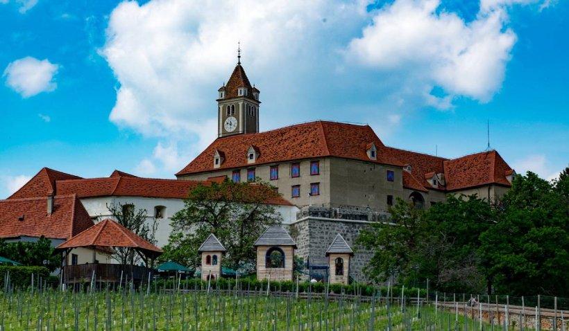 Noi dezvăluiri despre Prințul Emanuel von und zu Liechtenstein, acuzat că l-a omorât pe ursul Arthur