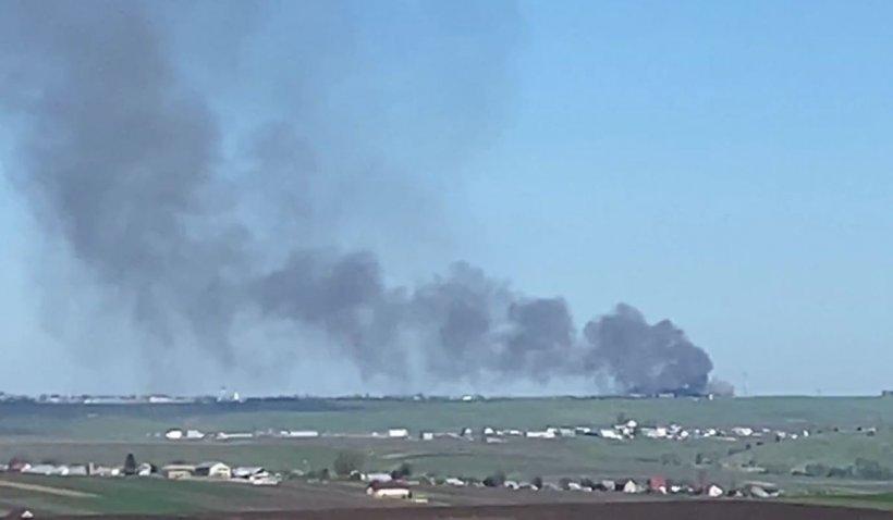 Zeci de vaci şi oi au ars de vii într-un incendiu la un adăpost de animale din Suceava