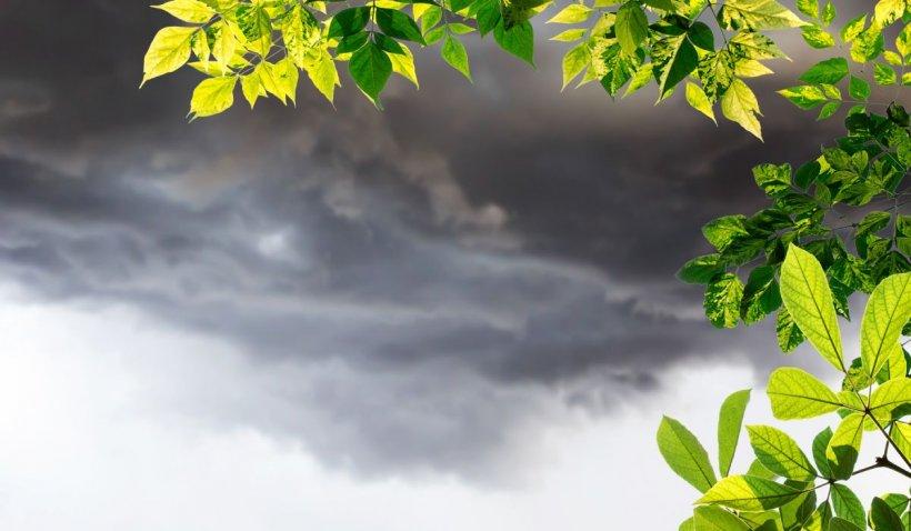 Prognoza meteo 10 mai - 7 iunie 2021. Vremea se schimbă în următoarele săptămâni