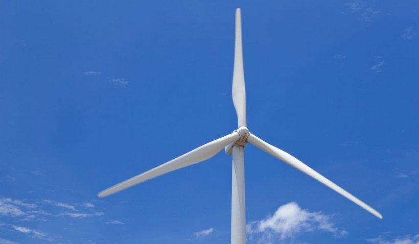 Moarte atroce pentru un tânăr de 25 de ani: a fost prins în rotorul unei turbine eoliene, în judeţul Constanţa