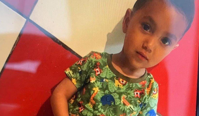 David, copilul de 2 ani dispărut în Floreşti, a fost găsit mort
