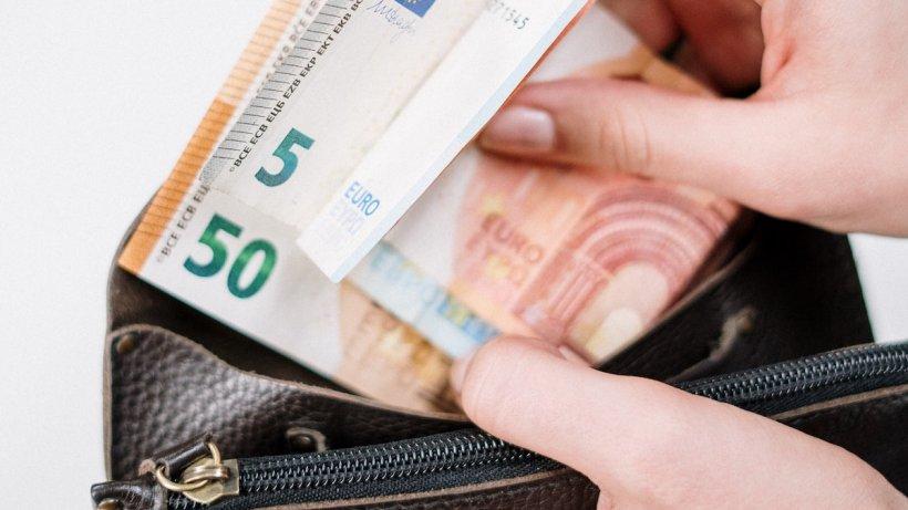Germania oferă câte 1.200 de euro pe lună voluntarilor, care nu trebuie să facă nimic în schimbul banilor