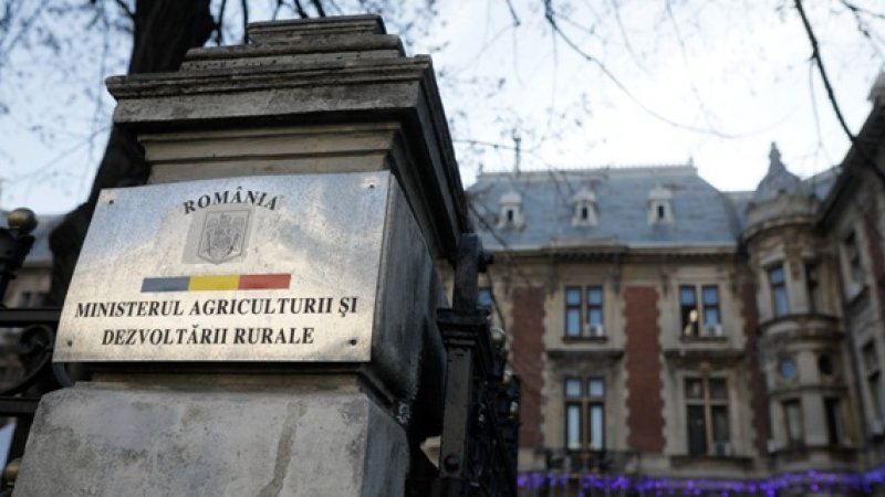 Peste 600 de angajați din Ministerul Agriculturii au primit sporuri în 2020. Suma la care se ridică plata suplimentară
