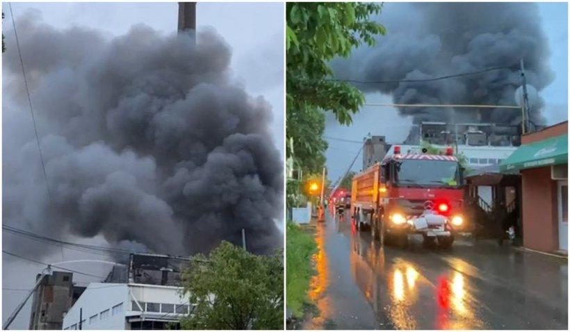 Incendiul de la Brazi a fost provocat. Mai multe butelii de propan au explodat