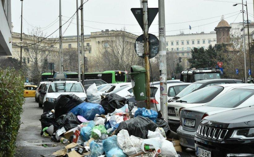 Sectorul 1 are cel mai mic tarif de salubrizare din București. Locuitorii plătesc 2,40 lei pe lună pentru gunoi
