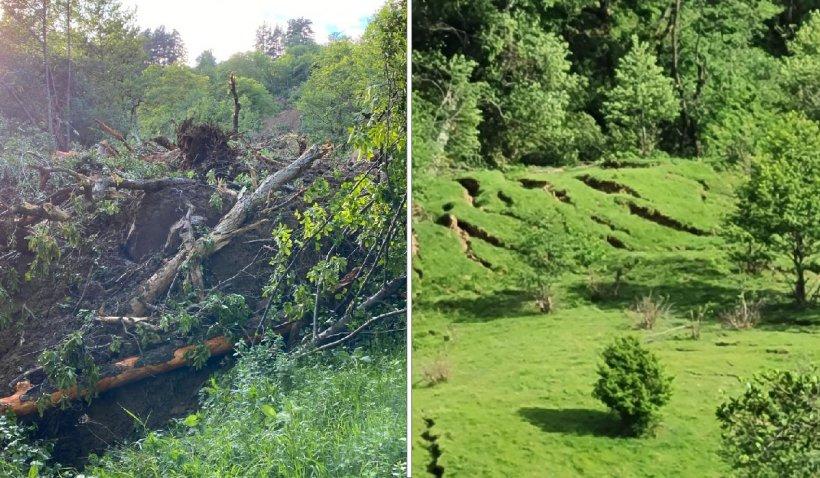 Zeci de hectare de pădure şi păşune au fost afectate de o alunecare masivă de teren în Buzău