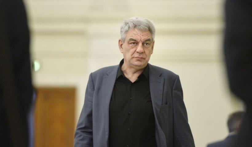 """Mihai Tudose, despre Cîțu: """"Ăsta-i ca șoricelul care țopăie fălos pe lângă elefant și-i zice: tropăim, tropăim?!"""""""