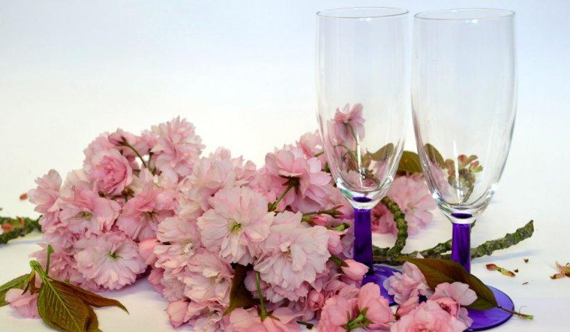 Ce flori poți să dăruiești la o cununie civilă? Maison D'Or îți oferă cele mai bune sugestii