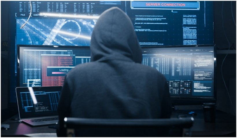 """Polonia, ţinta unui atac cibernetic """"fără precedent"""", potrivit guvernului"""