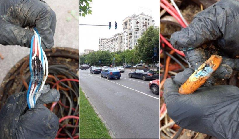 Șobolanii au dat peste cap traficul de la Unirii, după ce au ros cablurile de la semafoare