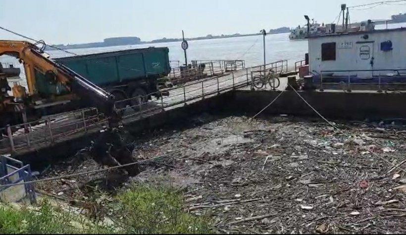 Dunărea sufocată de gunoaie. S-a format o adevarată deltă toxică cu resturi vegetale, cadavre și multe peturi