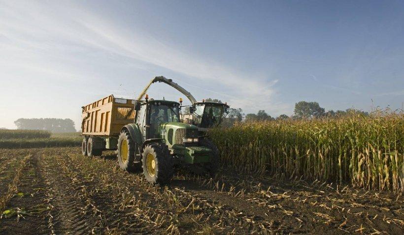 Agricultura ecologică ar putea reduce producția de cereale şi ar tranforma UE într-un importator net