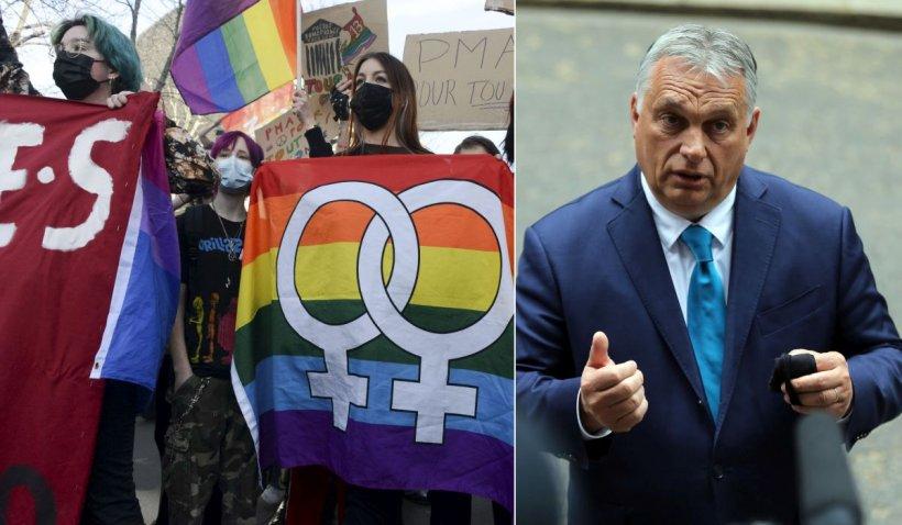 Cine sunt cei 17 șefi de stat și de guvern care s-au angajat să lupte împotriva discriminării LGBT, după scandalul legii din Ungaria