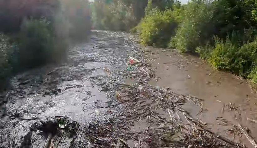 O viitură de numai un minut a umplut un râu din Apuseni cu tone de gunoaie