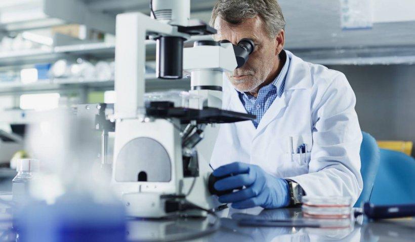 Cercetătorii au descoperit de ce mutațiile coronavirusului sunt mai transmisibile