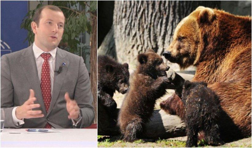 """Comisarul european pentru Mediu: """"România are cea mai mare populaţie de urşi din Europa: 4.000. În UE, sunt 6.500"""""""