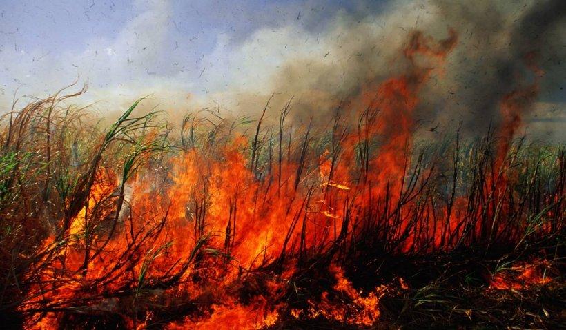 Recoltă de grâu, distrusă de un incendiu provocat de o rachetă antigrindină