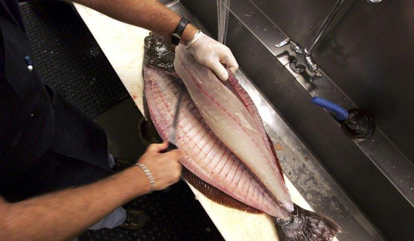 """Peştele cel mai consumat în România, pericol pentru sănătate. Dr. Carniciu: """"Vine cu toxine şi nici nu are prea mulţi nutrienţi"""""""
