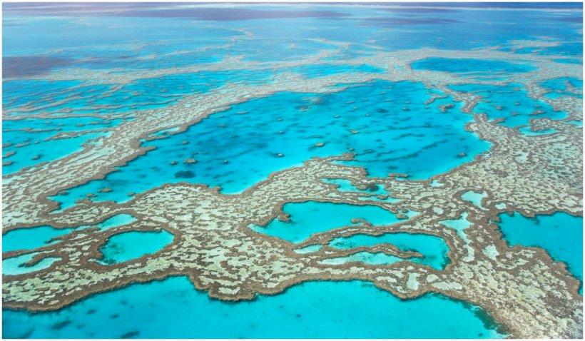 Australia a evitat înscrierea Marii Bariere de Corali, pe lista patrimoniului UNESCO în pericol