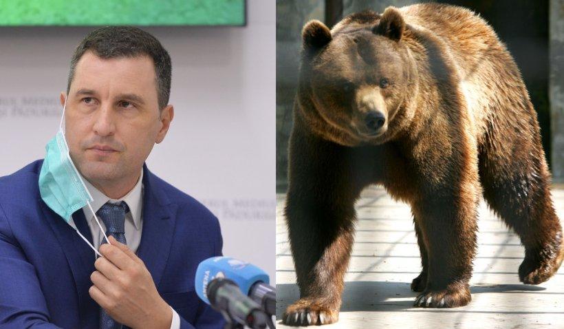 """Tanczos Barna, reacţie după ultimele atacuri ale urşilor: """"Ursul reprezintă un pericol real astăzi în România"""""""