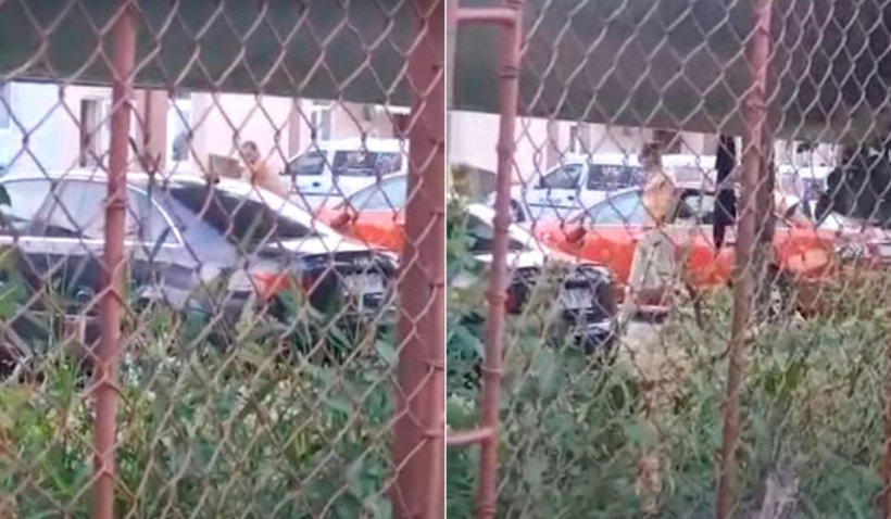 Bărbat din Râmnicu Vâlcea, filmat când distrugea cu toporul un Audi pentru că îi amintea de un mort