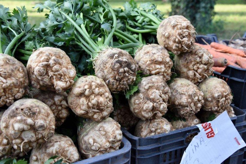 Cea mai toxică legumă în mâncare. Ne îmbolnăvim dacă o consumăm în cantități mari