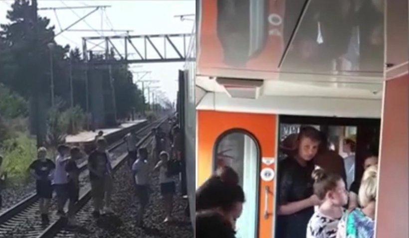 Trenul care a rămas fără frâne în pădure, după ce s-a blocat 9 ore azi-noapte, a fost deblocat