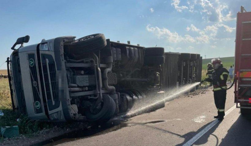 100 de oi au murit după ce TIR-ul cu care erau transportate s-a răsturnat pe un drum județean din Tulcea